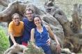 Ruta de la pedra en sec (Mallorca)